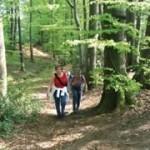 Wandern DiVa Walk Varus Region im Osnabrücker Land